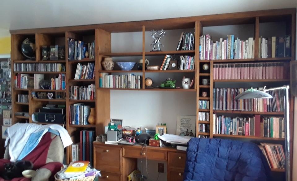 bookcase 0119