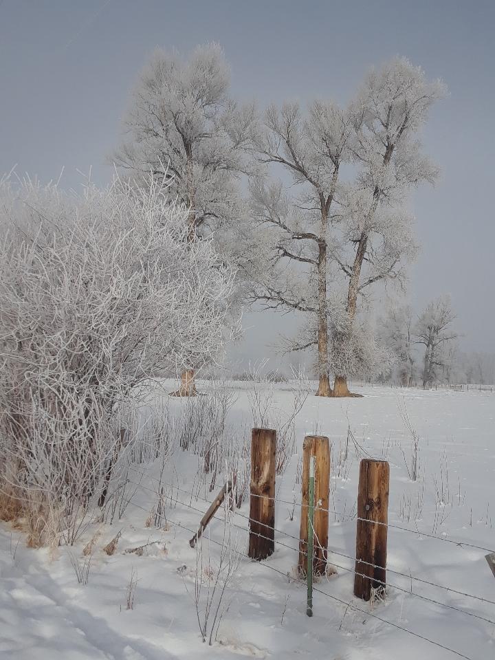 van tuyl trail 0119