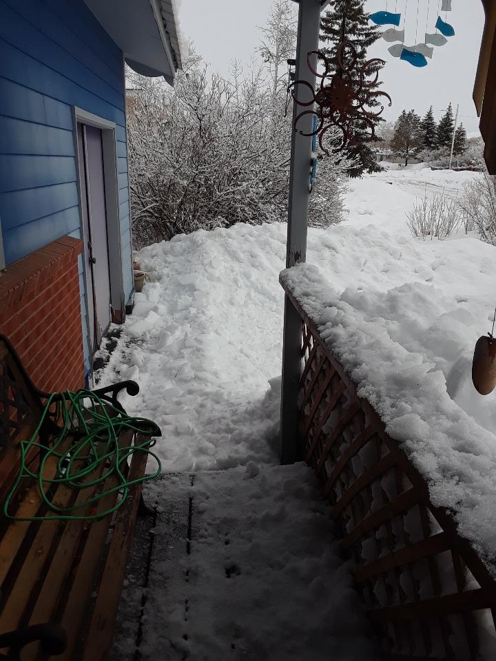 porch 0319