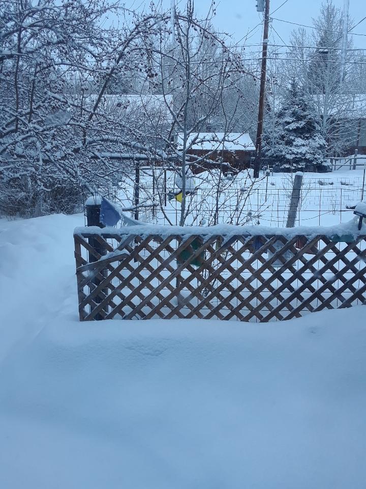 snow 0319