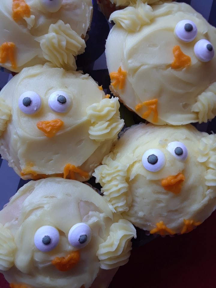 chicks 0419