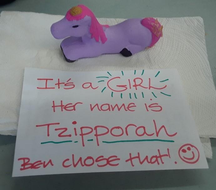 tzipporah 0419