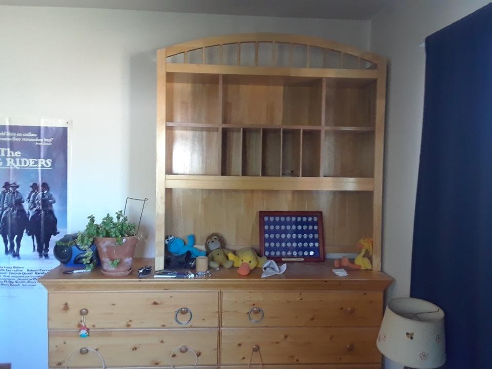 shelves 0819