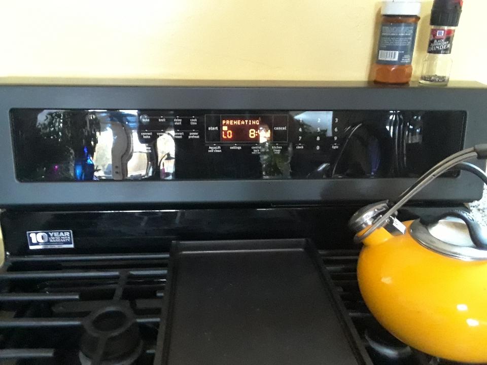 oven 1019