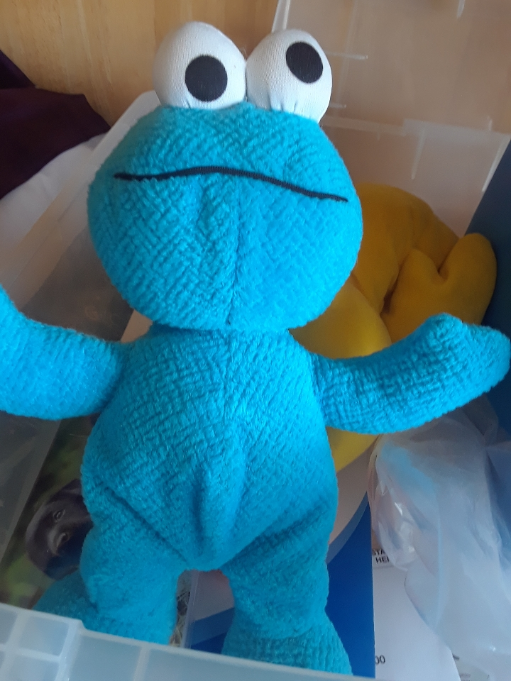 baby cookie monster 1119