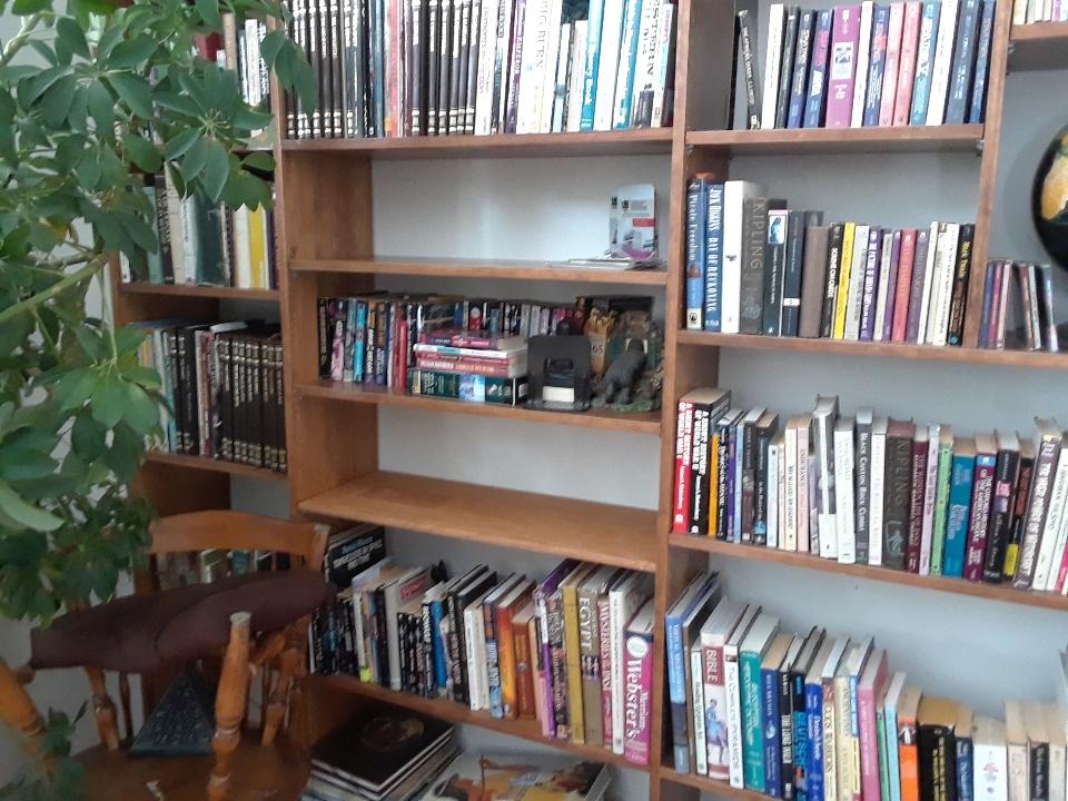 new shelf 0120
