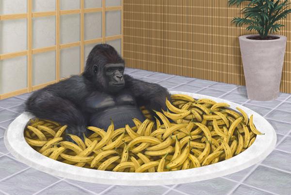 gorilla 0220