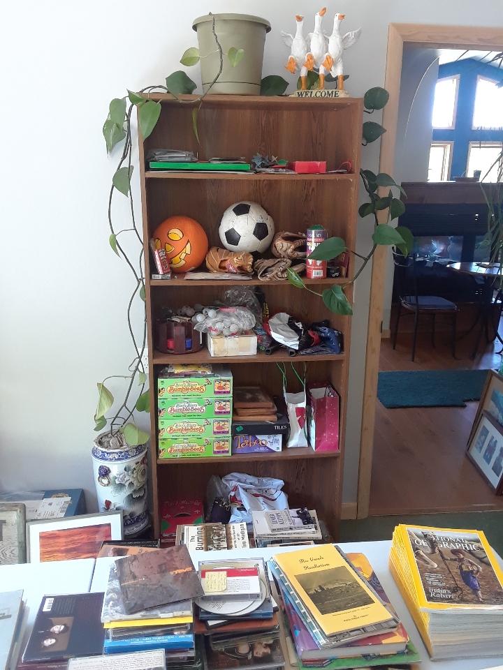 bookcase 0620